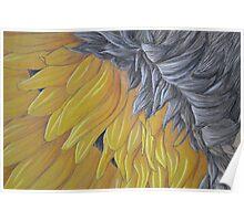 Upside down Sunflower Poster