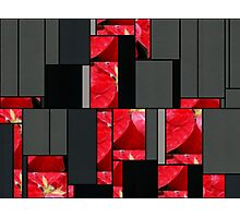 Mottled Red Poinsettia 2 Art Rectangles 7 Photographic Print