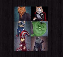 AvengeCats by ZoooGeee