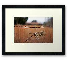 Pretty Things Framed Print