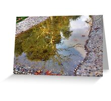 miror lake  Greeting Card