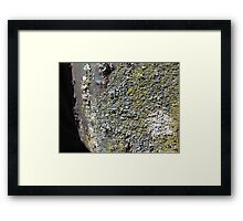 Textured Decay Framed Print