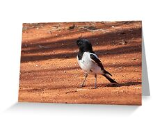 Hooded Robin ~ A Rare Find Greeting Card