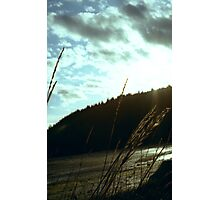 Sunset on the water Chuckanut Bay american northwest landscape - Spighe nel Tempo Photographic Print