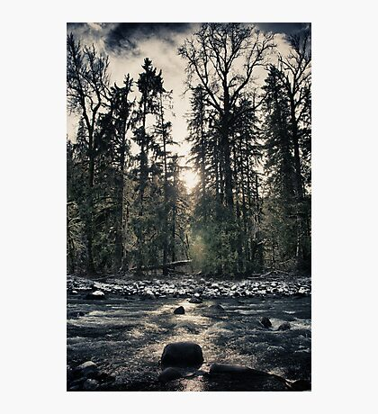 River in the forest at sunset fine art color wall art from the Great Pacific Northwest - Il silenzio del bosco Photographic Print