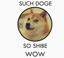 Such Doge Kids Clothes