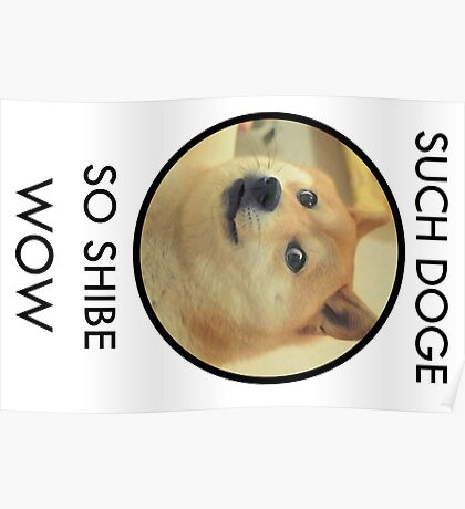 Such Doge Poster