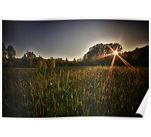 Autumn sunset landscape fields and forest in the Pacific Northwest fine art fall color wall art - Tramonta il Sol Poster