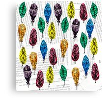 Colorful Feather withText Background Canvas Print