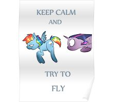 Keep calm and try to fly Poster