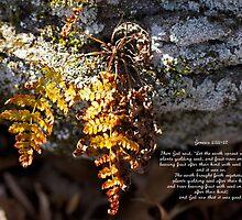 Golden Autumn Fern by MotherNature