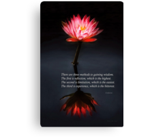 Inspirational - Reflection - Confucius Canvas Print