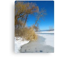 Wintertime At Old Woman Creek Canvas Print