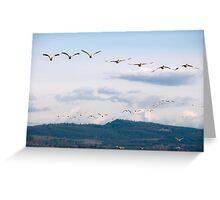 Naturalistic bird migratory snow geese in flight - I Viaggiatori Greeting Card