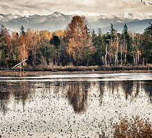Swamp lake with the colors off autumn Pacific Northwest landscape fine art wall art decoration - Il riflesso del tempo by visionitaliane
