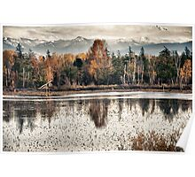 Swamp lake with the colors off autumn Pacific Northwest landscape fine art wall art decoration - Il riflesso del tempo Poster