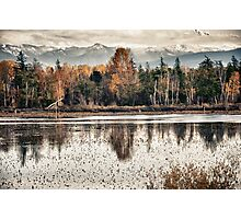 Swamp lake with the colors off autumn Pacific Northwest landscape fine art wall art decoration - Il riflesso del tempo Photographic Print