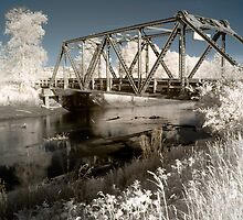 Bridge over the river in the fields color infrared - Il ponte verso il Sogno by visionitaliane