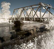 Bridge over the river in the fields color infrared - Il ponte verso il Sogno by visionitaliane