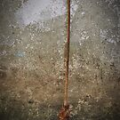 Handcrafted Broom by Pandrot