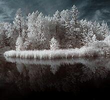 Panoramic infrared naturalistic wall art - Specchio del Sogno by visionitaliane