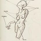 Anatomi 1 by Svaleroeven