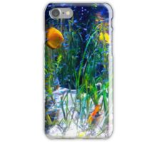Tropical fish Discus and Neons iPhone Case/Skin