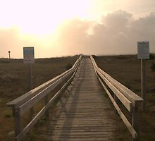 Boardwalk to the Beach by Billlee