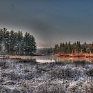 Frosty Marsh Morning by Carrie Blackwood