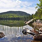 Eagle Lake, Acadia by Michele Conner