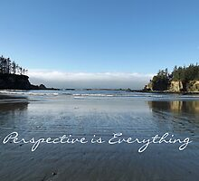 Perspective is Everything by Greg Lester