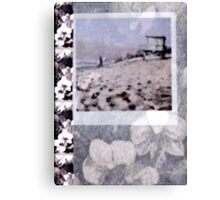 Malibu First Point Pale Silver Orchid Overlay Canvas Print