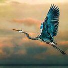 Evening Flight by Tarrby