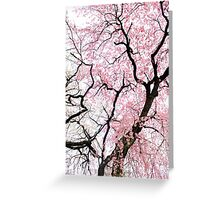 Dancing Cherry Blossom Trees Greeting Card