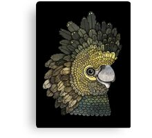 Black Cockatoo Canvas Print