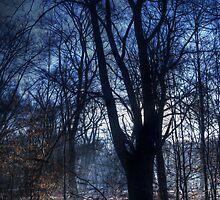 Epping Forest in Winter Oil Effect by Nigel Bangert