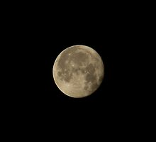 Waning Gibbous Moon by Sue Robinson