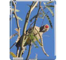 Gila Woodpecker in a Tree iPad Case/Skin