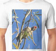 Gila Woodpecker in a Tree Unisex T-Shirt