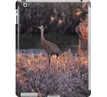 Just Chilling iPad Case/Skin