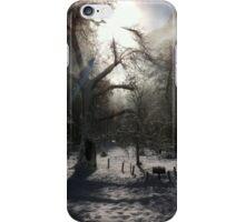 Ahwahnee Tree iPhone Case/Skin