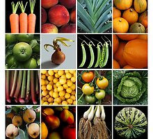 16 Fruit and Veg by Yampimon