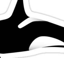 Orca - Killer Whale  Sticker