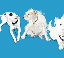 Three White Dogs by WoolleyWorld