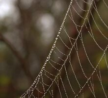 String of Drops by Kathi Arnell