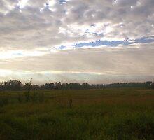 Foggy Sunrise by Kathi Arnell