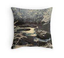 GREENBRIER,WINTER Throw Pillow