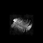 Dark  Angel II, 20 by Alenka Co