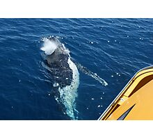 Whale Under the Boat 6 Photographic Print