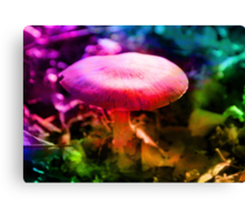 Trippy Nature - Colorful Mushroom  Canvas Print